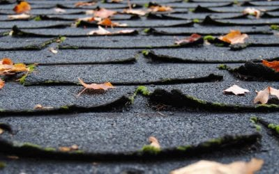 Four Signs You Need a Roof Replacement